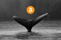 According to data almost 50% of bitcoins are being held by whales